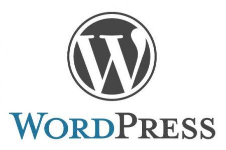 Responsive WordPress websites Tilburg